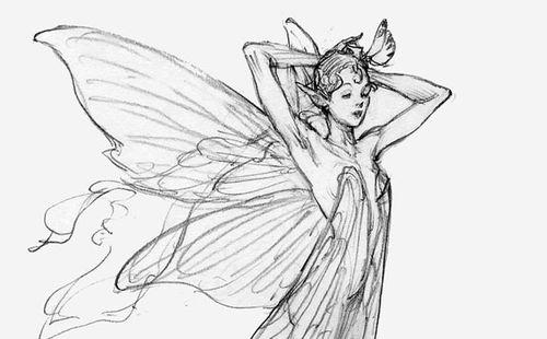 Iain McCaig fairy