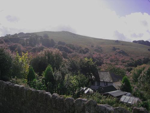 Devon 2009