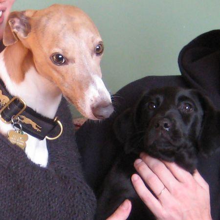 Friends - Ozzie & Tilly
