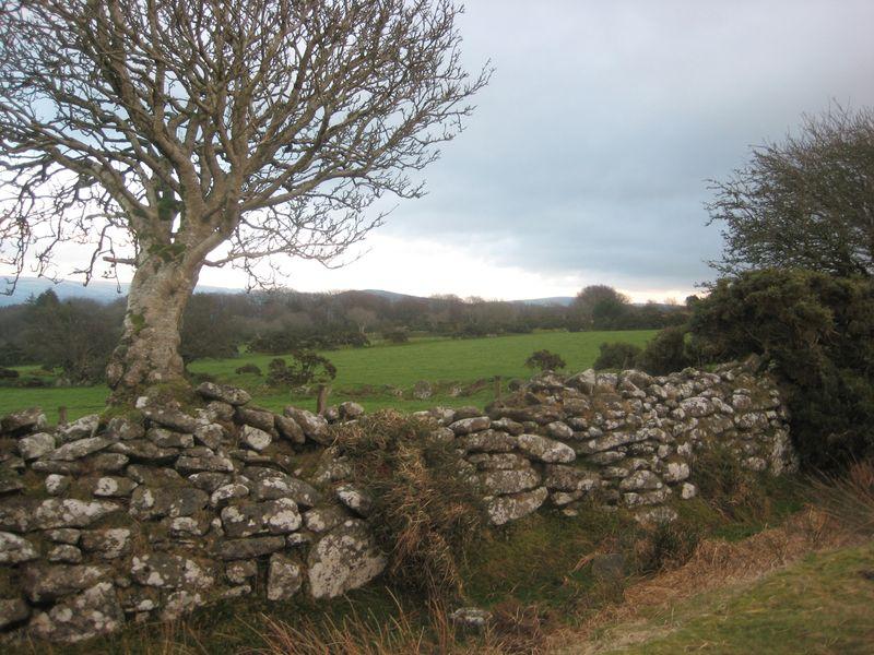 Near Scorhill