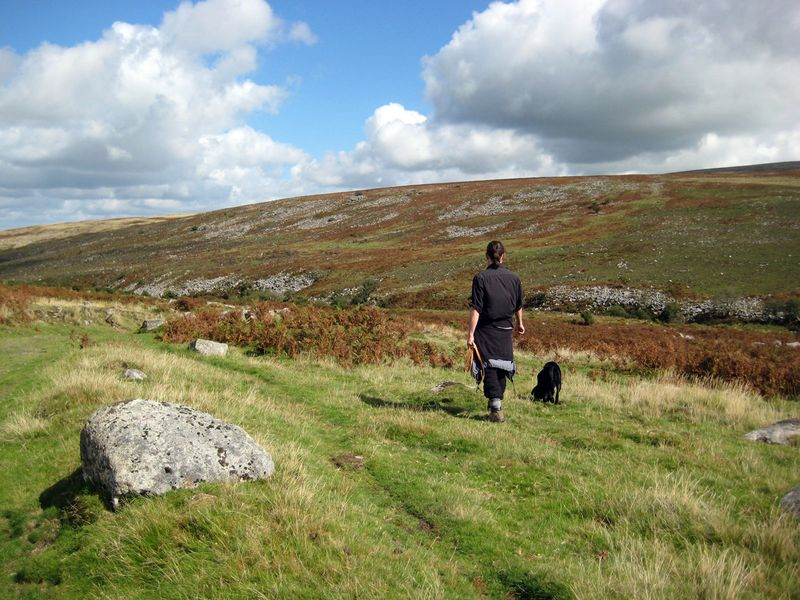Sheep-training