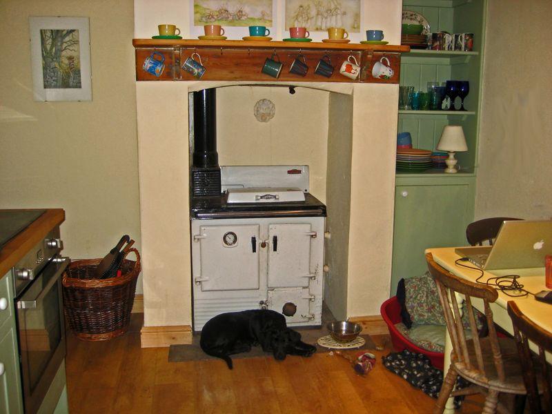 The warm kitchen hearth
