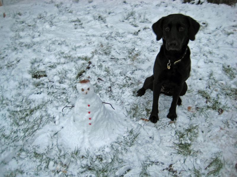 Tilly  the snowman