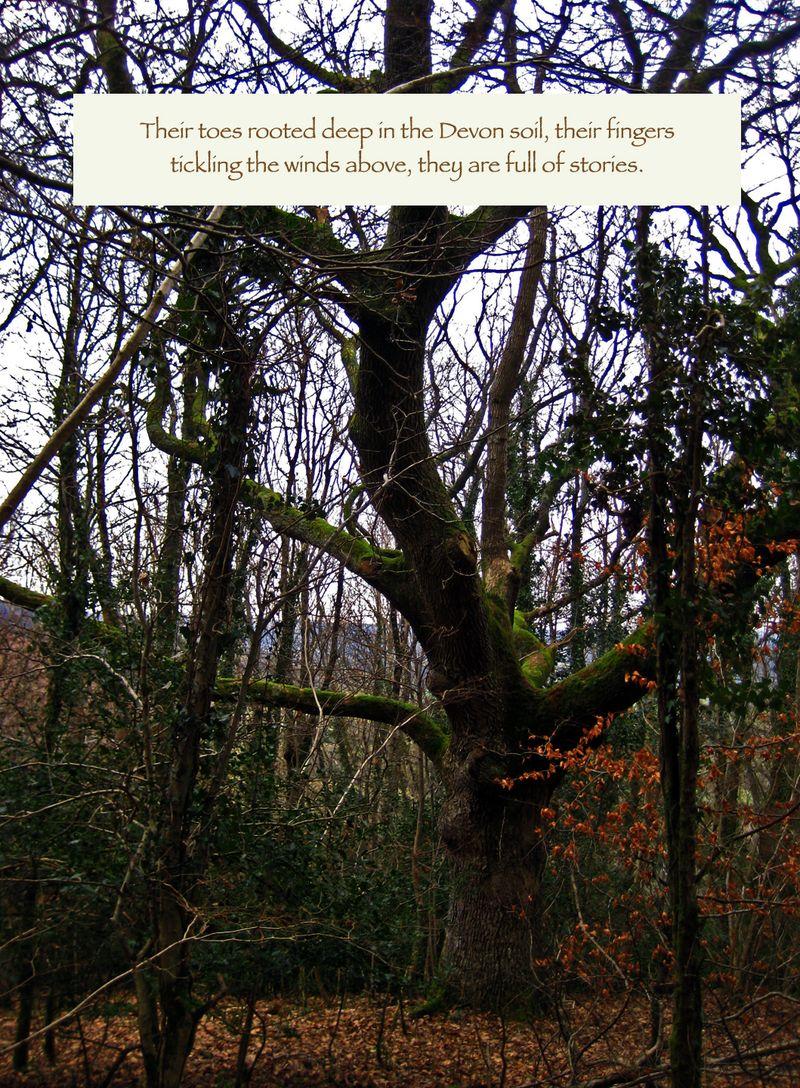 Tree Elders 2
