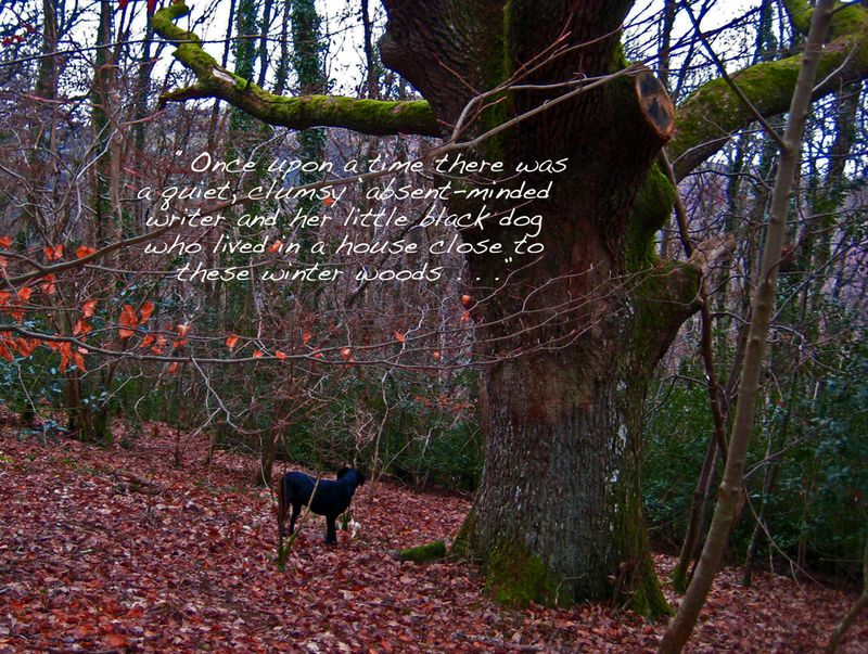 Tilly and the Tree Elder