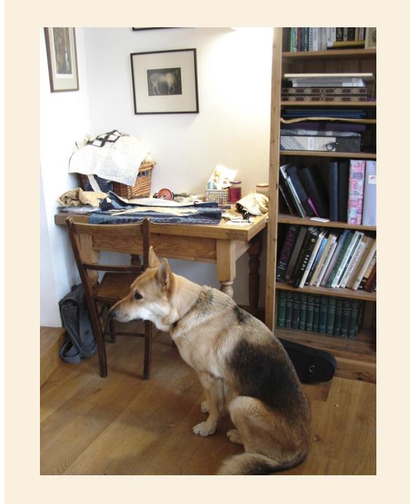 Danielle's studio 3