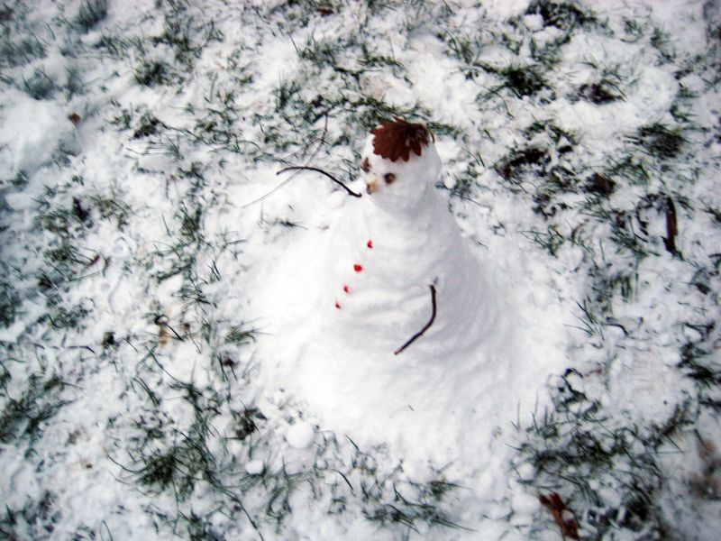 The Mysterious Snowman 2