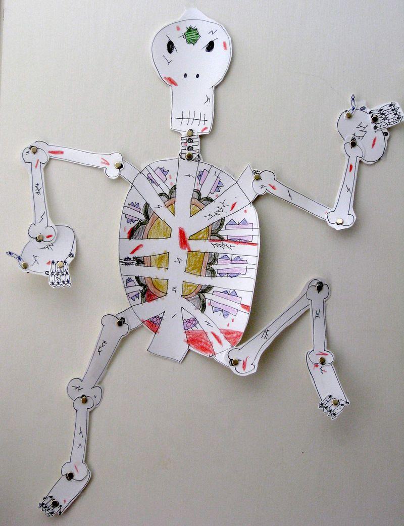 HallSkeleton