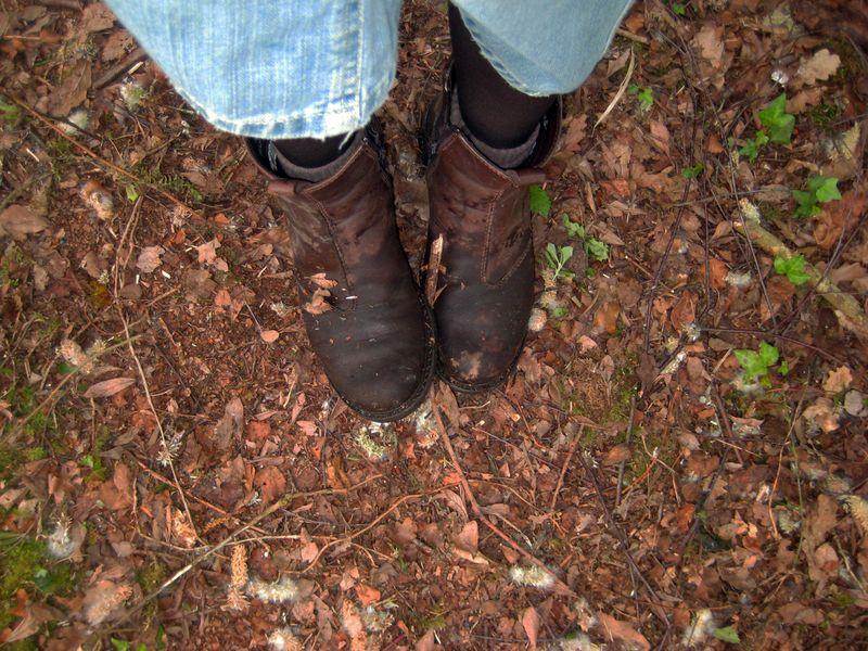 Muddy walk 5