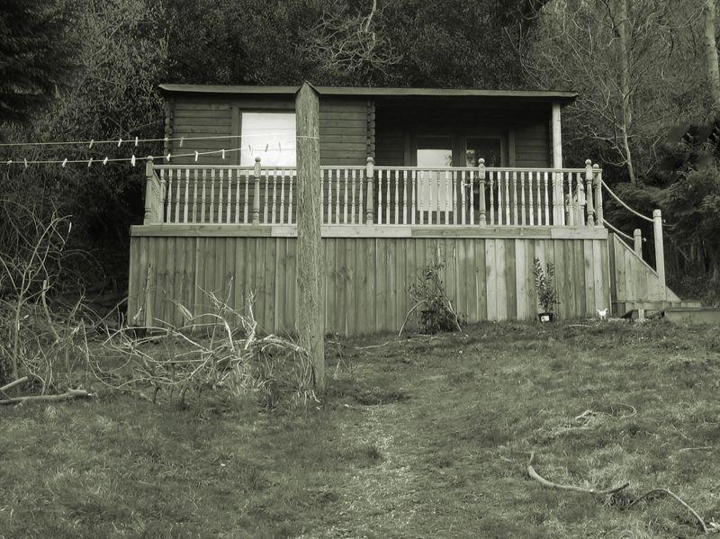 Cabin construction 2