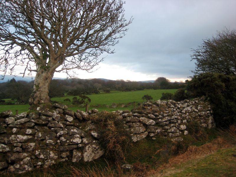 Dartmoor stone
