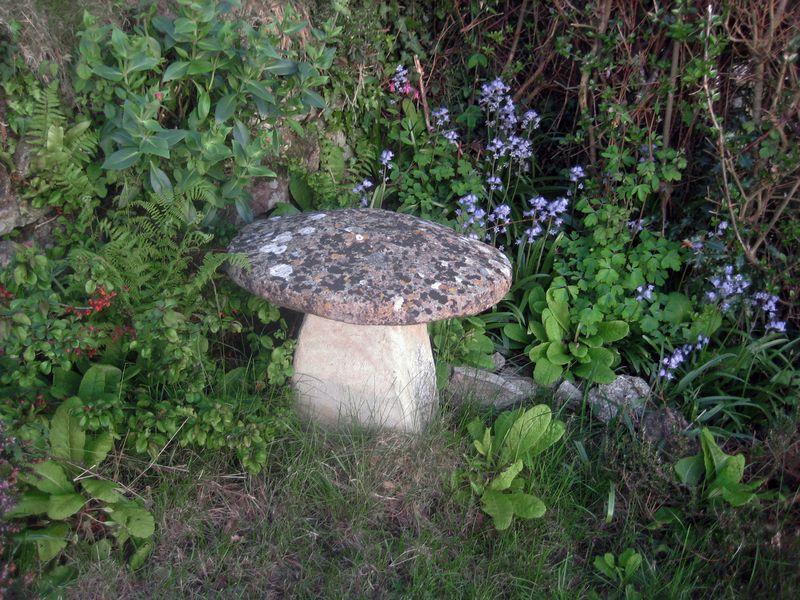 Spring flowers around the stone mushroom