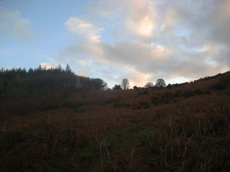 Morning on our hill x