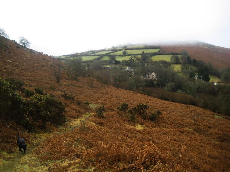 Mist on Meldon