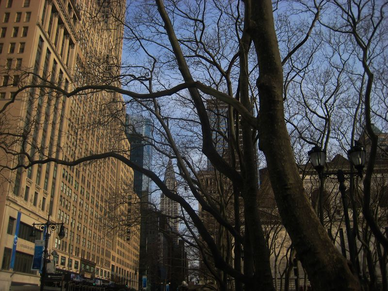 The Chrystler Building viewed through the trees of 42nd Street
