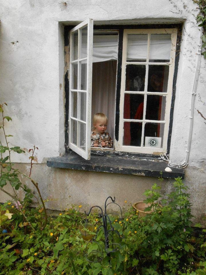 At the Cottage Window by Sarah Howes