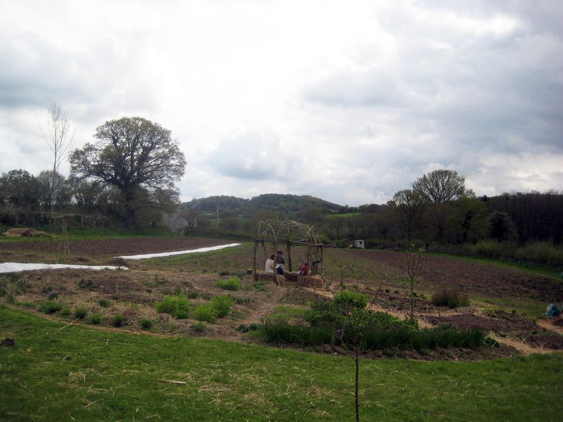 Herb garden and veg field beyond