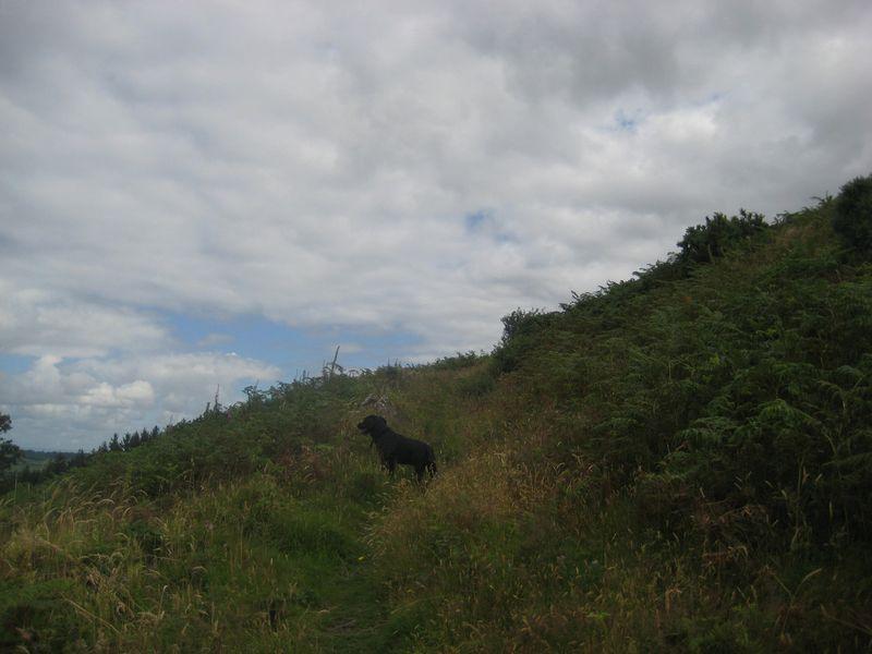 Nattadon climb 3