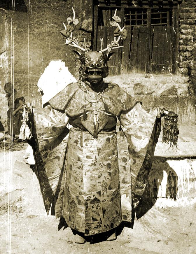 Tibetan Cham Deer