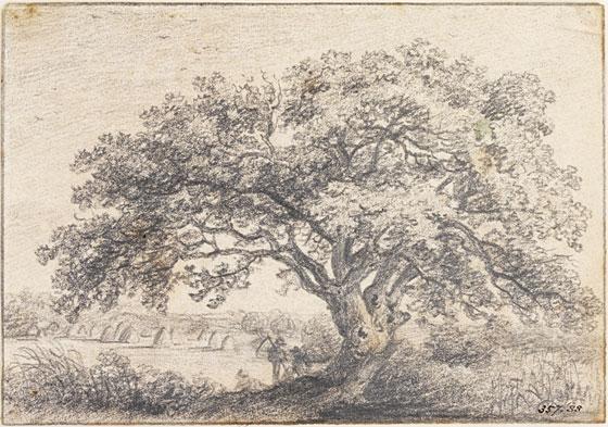 Oak tree by John Constable