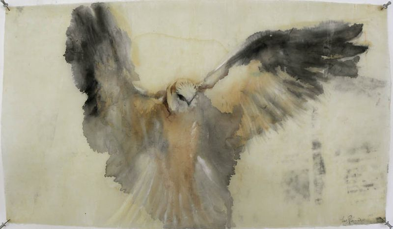 White Kite Hovering by Jane Rosen.jpg