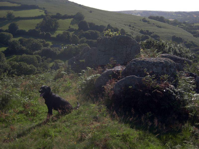 ...to the hills of Devon.