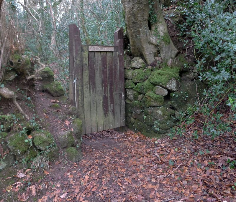 Woodland gate, 2