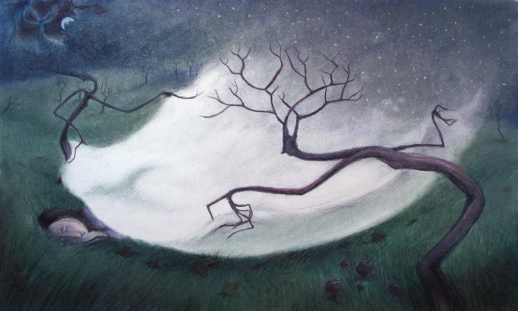 Blanket of Snow by Virginia Lee