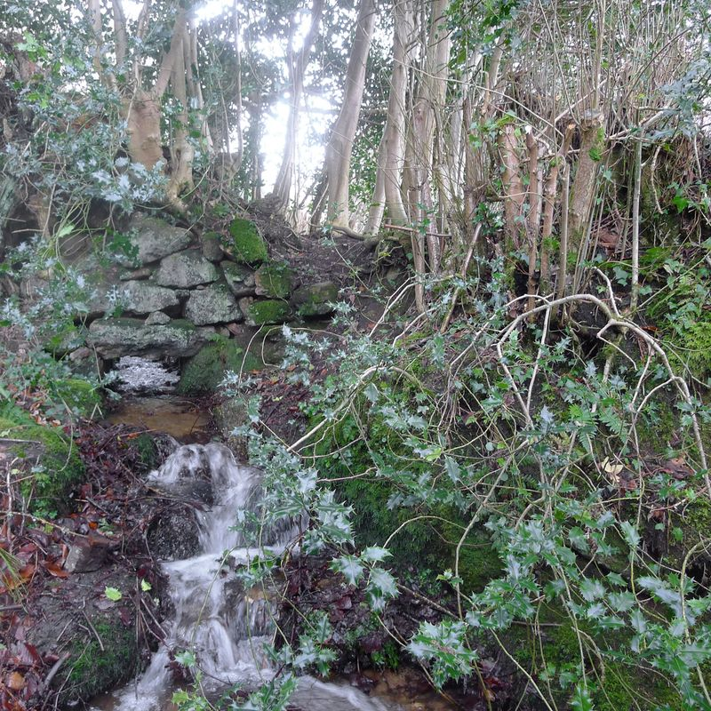 Water flows under an old stone wall, 5