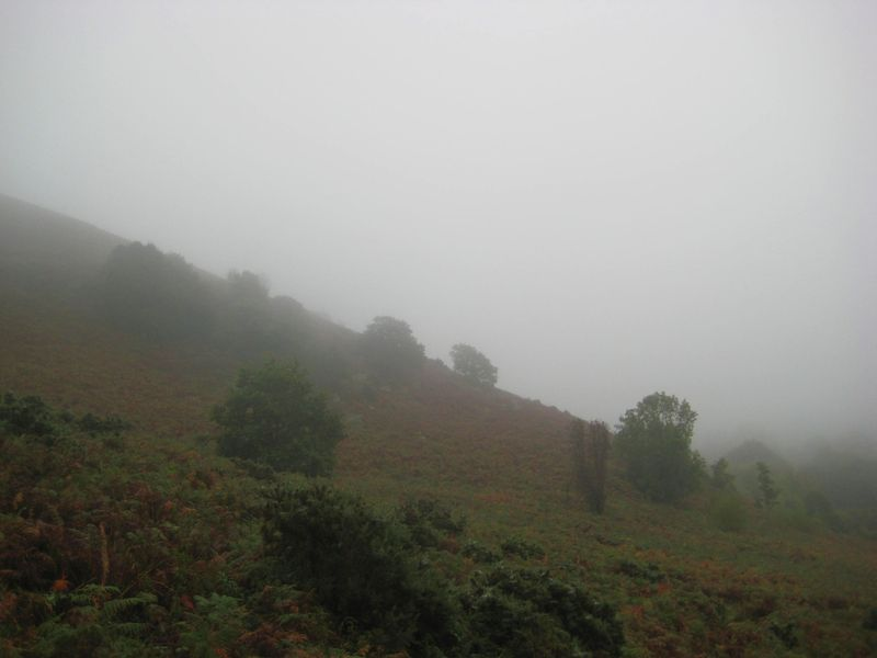 Mist on Nattadon 1