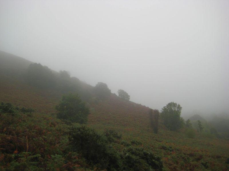 Mist on Nattadon 1