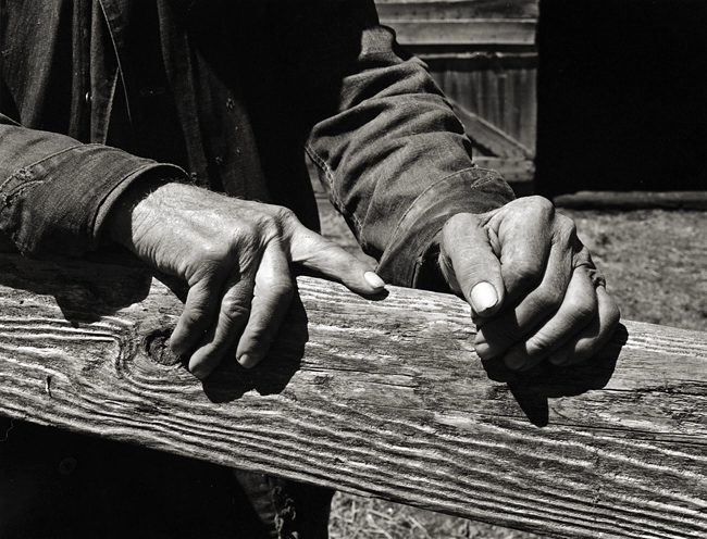 Wright Morris' Hands by Dorothea Lange