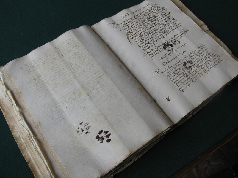 15th century book with paw prints