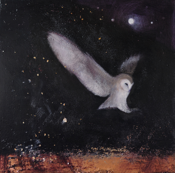 The Falling Stars by Catherine Hyde