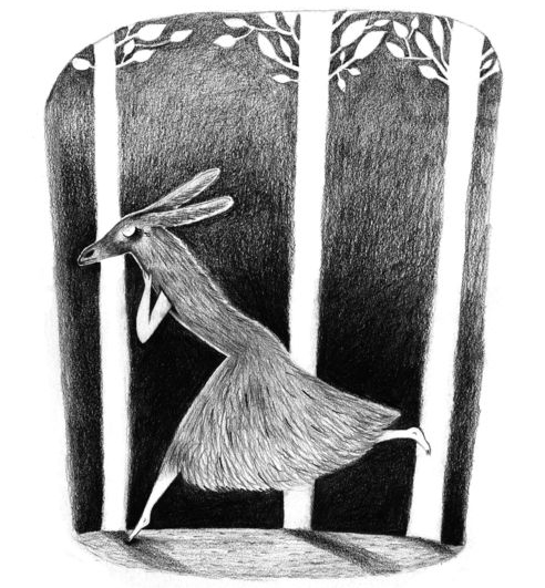 Peau d'âne (Donkeyskin) by Anneclaire Macé