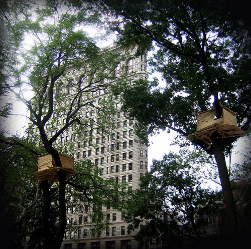 Tree Huts by Tadashi Kawamata in Madison Square Park, NY