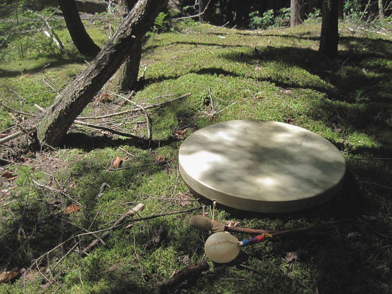 Forest drum