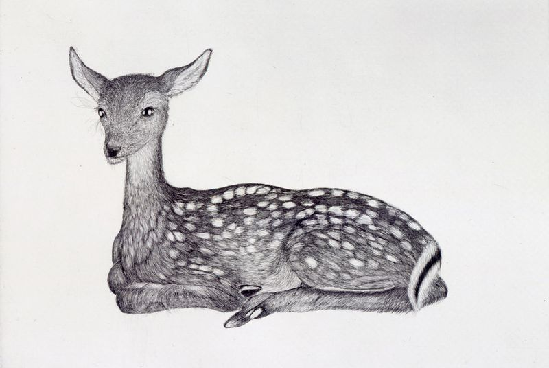 Fawn by Kiki Smith