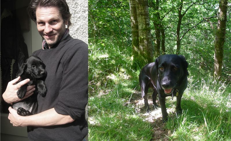 Tilly in 2009 and 2013