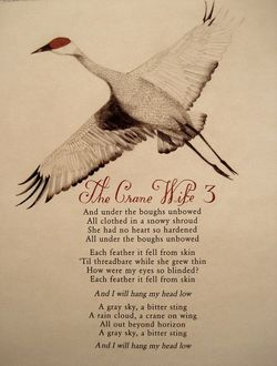 Lyrics for Colin Meloy's The Crane Wife 3