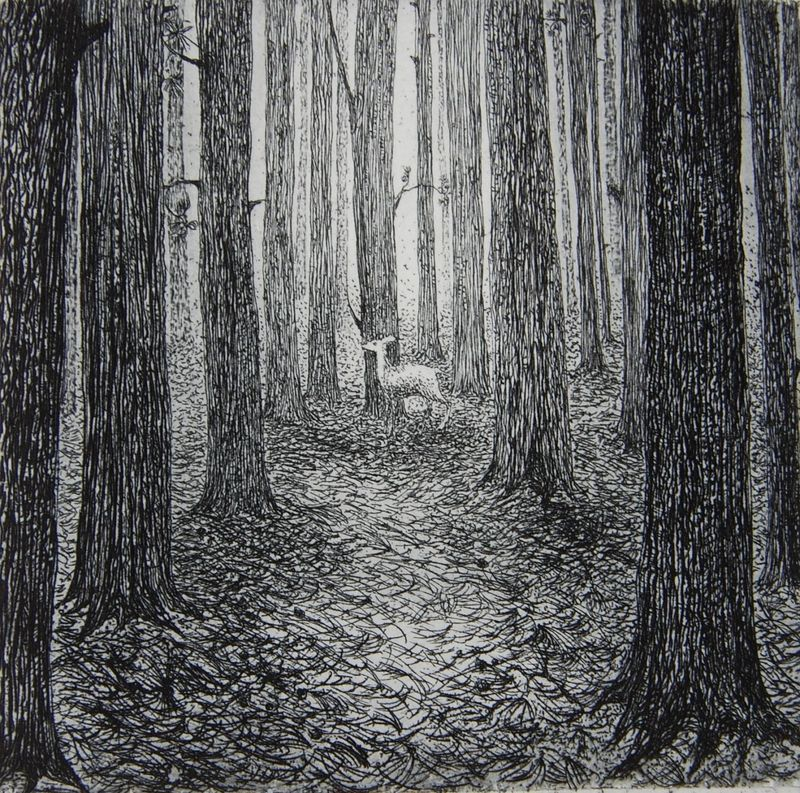 A Forest by Flora McLachlan