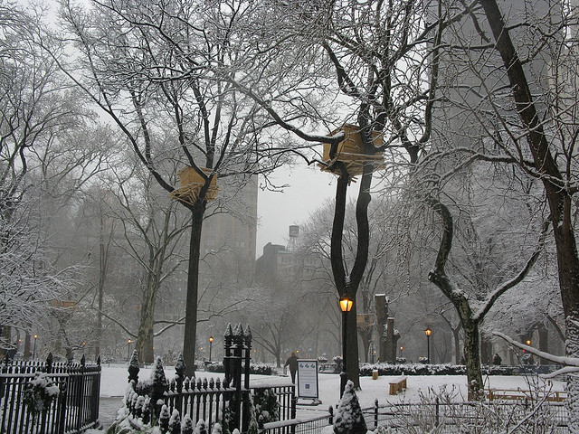 Tree Huts in winter, NYC