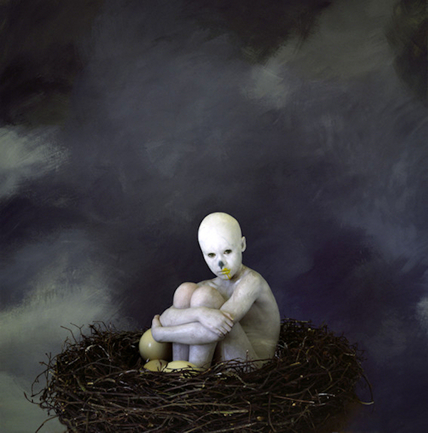 Nest by Ione Rucquoi