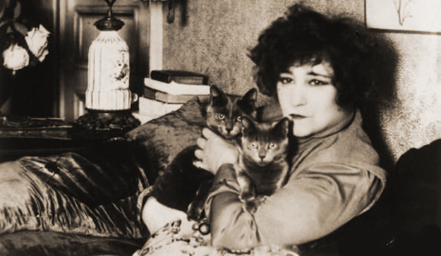 Colette and her cats