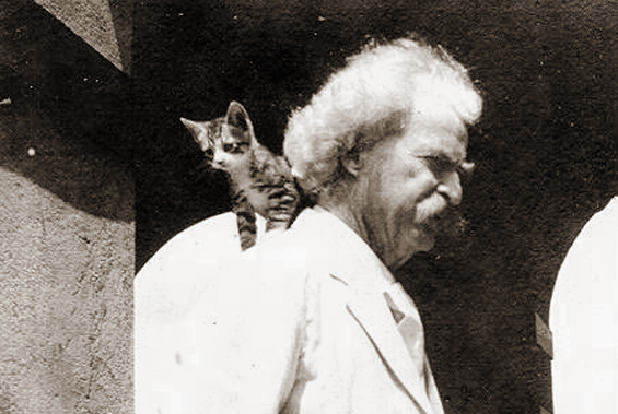 Mark Twain with kitten