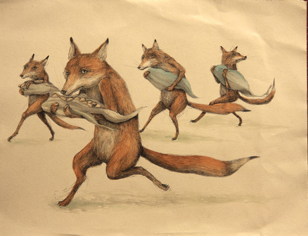 Foxes by Erica Il Cane