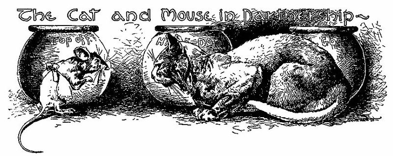 The Cat and the Mouse by John B. Gruelle