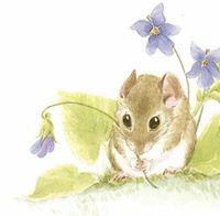 Mousekin by Edna Miller