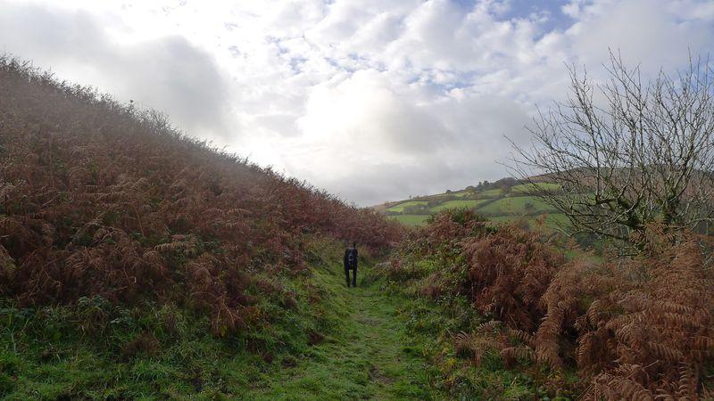 Nattadon Hill 4