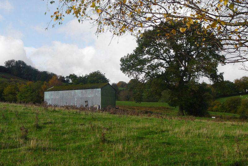 Sheep barn in autumn